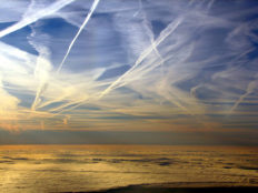 Featured image for European Parliament votes to reduce emissions trading scheme to only cover european flights